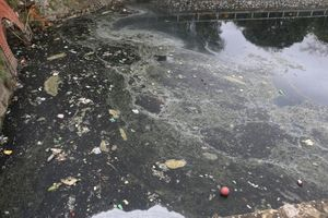 Nạo vét, xử lý ô nhiễm tại di tích Hào Thành cổ Vinh