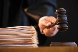 Vụ trục lợi tiền quỹ bảo hiểm: Hội đồng xét xử bác đơn kháng cáo của Tô Thanh Huyền