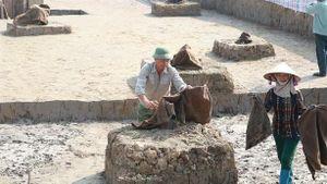 Phủ chăn ẩm, tưới nước cho bãi cọc Cao Quỳ