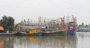 Buổi trưa ở cảng cá Mắt Rồng