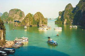 Gói thầu 275 tỷ đồng tại Quảng Ninh: Nhà thầu lớn không đáp ứng năng lực