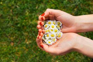 Phật dạy: Có 2 điều ngay lập tức mang lại niềm vui và hạnh phúc