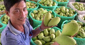 Nguyên Thứ trưởng Bộ Ngoại giao Phạm Quang Vinh: Tăng tốc thương mại thần kỳ