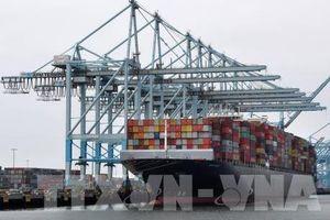 Doanh nghiệp lo ngại về thỏa thuận giai đoạn 1 Mỹ và Trung Quốc