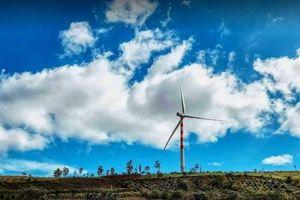 'Báo động đỏ' cho môi trường đầu tư tại Phú Yên: 'Trên trải thảm, dưới rải đinh'