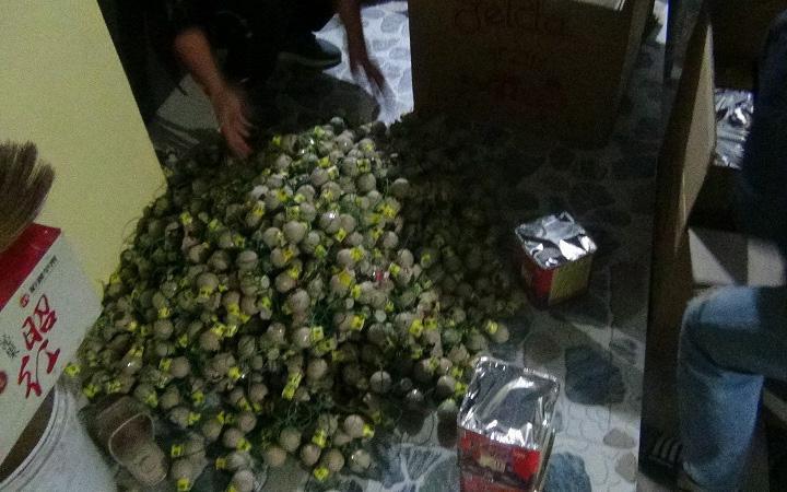 Ninh Bình: Bắt giữ đối tượng tàng trữ gần 60 kg pháo nổ