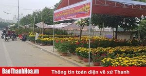 20 điểm chợ hoa xuân trong dịp Tết Nguyên đán Cánh Tý 2020 tại TP Thanh Hóa