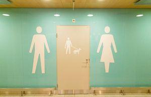 Phần Lan lắp đặt nhà vệ sinh cho chó ở sân bay Helsinki