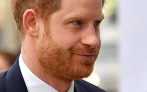 Hoàng tử Harry sang Canada sau sự kiện cuối đại diện hoàng gia