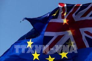 Tại sao 'virus' Brexit không lan đến phần còn lại của EU?