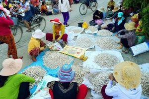 Độc đáo phiên chợ ở 'đảo tỏi' Lý Sơn