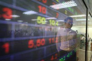 Cổ phiếu VTS của Viglacera Từ Sơn được dỡ bỏ hạn chế giao dịch