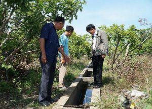 Xã Bông Trang, huyện Xuyên Mộc: Thiếu nước tưới cục bộ