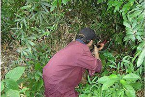 Bình Định: Đi săn thú rừng, người đàn ông chết thảm bên cạnh khẩu súng độ chế