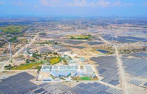 Ninh Thuận: Một doanh nghiệp tư nhân đầu tư đồng bộ dự án điện mặt trời với đường dây truyền tải 500/220kV
