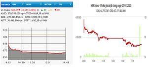 Cổ phiếu giảm sàn la liệt, VN-Index mất hơn 43 điểm