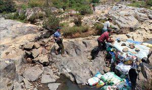 Thủy điện tích nước, hàng trăm héc-ta hoa màu có nguy cơ chết khô