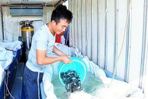Trường Đại học Nha Trang: Nhiều Thành tựu trong nghiên cứu khoa học