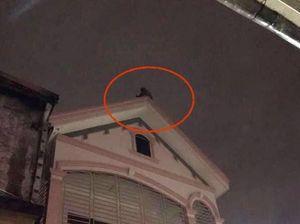 Nam thanh niên bỏ ý định tự tử sau hơn 2 giờ 'cố thủ' trên nóc nhà