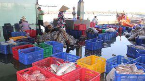 Xử lý mạnh tay tàu cá đánh bắt trái phép