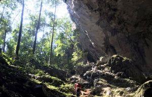 Quảng Bình: Phát hiện thêm 12 hang động mới với chiều dài hơn 10km
