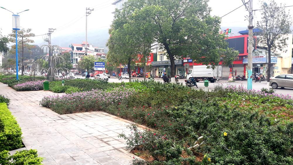 Các tuyến đường phố hoa ở TP Cẩm Phả