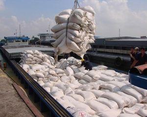 Kêu cứu Thủ tướng Chính phủ vụ đăng ký xuất gạo lúc... 0 giờ