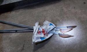 Khống chế 2 thanh niên xăm trổ mang dao 'phóng lợn' vượt chốt kiểm dịch ở Hà Nội