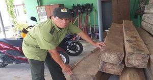 Hàng loạt xe ôtô 16 chỗ được độ chế để chở gỗ lậu