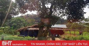 'Lén lút' dựng 4 lán trại trái phép trong Vườn Quốc gia Vũ Quang