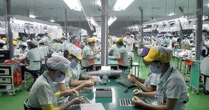 Bình Dương: Hơn 800 công nhân mượn thông tin người khác đi làm