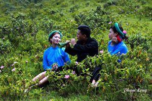 Tiên Yên: Trọng tâm, trọng điểm trong đầu tư các làng văn hóa DTTS