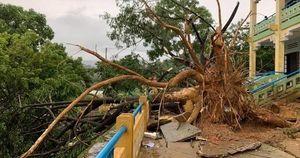Quảng Nam: Mưa dông kèm lốc xoáy khiến nhiều nhà dân bị tốc mái