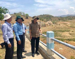 Kiểm tra tình hình hạn hán tại Bình Thuận