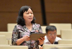 Tranh luận việc tăng chuyên gia, giảm lãnh đạo làm đại biểu Quốc hội