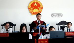 Vụ tranh chấp hợp đồng môi giới đất nền giữa Cty Bách Đạt An và Hoàng Nhất Nam: Bác đơn khởi kiện, buộc Bách Đạt An tiếp tục hợp đồng