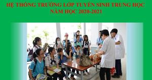 TP.HCM công bố chỉ tiêu tuyển sinh vào lớp 10 THPT năm học 2020-2021