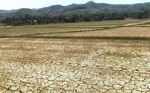 Nghệ An: Nắng nóng gay gắt kéo dài khiến nguồn nước các hồ đập đã cạn