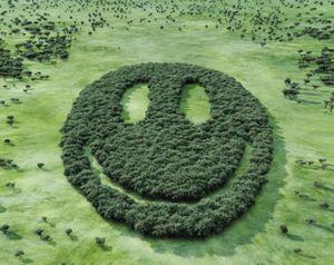 18 cách đơn giản để thành một người hạnh phúc