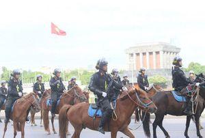 Cảnh sát cơ động kỵ binh VN thuần hóa được bao nhiêu ngựa hoang?