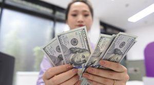 'Gió đổi chiều' với doanh nghiệp có dư nợ ngoại tệ