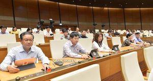 Quốc hội quyết định miễn thuế sử dụng đất nông nghiệp hết năm 2025