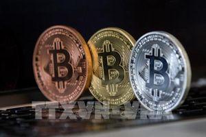 Công ty đầu tiên cho phép mua hàng bằng đồng tiền ảo bitcoin