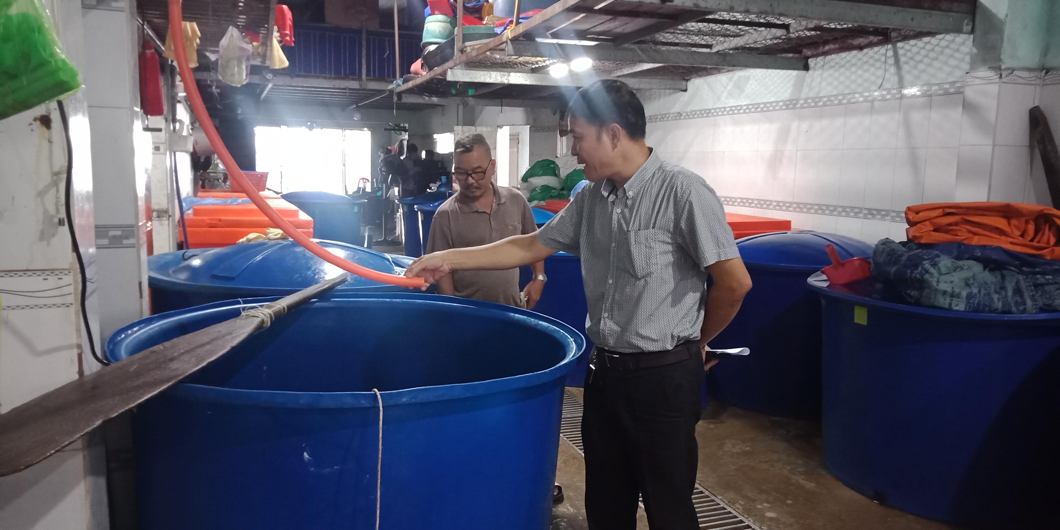 Cơ sở chế biến cá bò xả thải trực tiếp ra môi trường