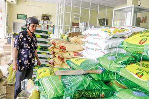 Nông dân mong giá phân bón được kéo giảm lâu dài