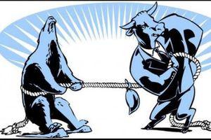 Thị trường giằng co, người mua cổ phiếu 'trà đá' ITA và HQC đang 'kẹt hàng'