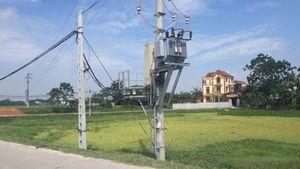 Tam Dương (Vĩnh Phúc): Điện lực xã Hoàng Lâu phát triển lưới điện hạ thế phục vụ nhân dân