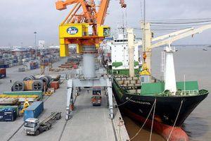 SOWATCO chi 300 tỷ đồng để sở hữu hơn 20% cổ phần Cảng Đồng Nai (PDN)