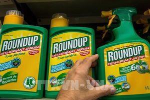 Bayer chi gần 10 tỷ euro giải quyết các vụ kiện liên quan thuốc diệt cỏ Roundup