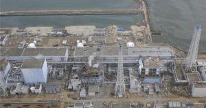 Fukushima 50: Những người hùng vô danh
